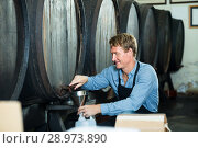 professional man working in winery pouring wine from wood to plastic bottle in cellar. Стоковое фото, фотограф Яков Филимонов / Фотобанк Лори