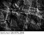 Купить «Texture of geologic stone», фото № 28975294, снято 22 августа 2019 г. (c) ElenArt / Фотобанк Лори
