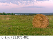 Large round bale of hay lays on a beveled meadow. Стоковое фото, фотограф Евгений Харитонов / Фотобанк Лори