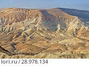 Beautiful views of Ein Avdat and Zin Valley. Negev, desert and semidesert region of southern Israel (2018 год). Стоковое фото, фотограф Валерия Попова / Фотобанк Лори