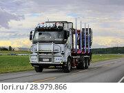 Купить «Road and sky summer landscape with customized white Sisu E12 480 logging truck of K Nyberg. Kimito, Finland - July 7, 2018.», фото № 28979866, снято 7 июля 2018 г. (c) age Fotostock / Фотобанк Лори