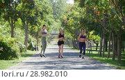 Купить «Three young girls are running in the Park among the green trees», видеоролик № 28982010, снято 15 октября 2019 г. (c) Константин Шишкин / Фотобанк Лори