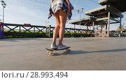 Купить «Slender girl rides a skateboard on a beautiful promenade on sunny summer evening», видеоролик № 28993494, снято 18 марта 2019 г. (c) Константин Шишкин / Фотобанк Лори