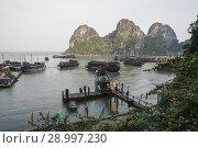 Купить «Dau Go Island harbor. Ha Long Bay, UNESCO World Heritage Site, Quang Ninh Province, Vietnam, Southeast Asia.», фото № 28997230, снято 29 января 2011 г. (c) age Fotostock / Фотобанк Лори