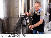 Купить «Brewer is checking the quality of beer in flask indoor.», фото № 29004794, снято 18 сентября 2017 г. (c) Яков Филимонов / Фотобанк Лори