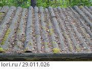 Купить «Деревянная крыша из горбыля, покрытая прошлогодней хвоей, листьями и шишками», фото № 29011026, снято 8 июля 2018 г. (c) александр афанасьев / Фотобанк Лори