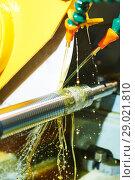 Купить «Thread cutting on polishing machine with oil lubrication», фото № 29021810, снято 15 мая 2018 г. (c) Дмитрий Калиновский / Фотобанк Лори