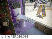 Купить «Decorated 'model toilets' at the luxury bathroom brands Tushy and Poo-Pourri 'poop-up' on the Bowery in New York on Wednesday, May 30, 2018. Tushy is selling...», фото № 29026094, снято 30 мая 2018 г. (c) age Fotostock / Фотобанк Лори