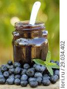 Купить «Blueberry jam.», фото № 29034402, снято 20 августа 2018 г. (c) easy Fotostock / Фотобанк Лори