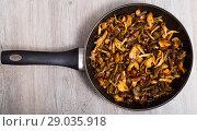 Купить «Delicious freshly cooked fried shitake mushrooms in a frying pan», фото № 29035918, снято 18 сентября 2018 г. (c) Яков Филимонов / Фотобанк Лори