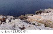 Купить «Norwegian fjord in sunny day, Averoy, Norway», видеоролик № 29036614, снято 1 сентября 2018 г. (c) Некрасов Андрей / Фотобанк Лори