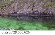 Купить «Norwegian fjord in sunny day, Averoy, Norway», видеоролик № 29036626, снято 1 сентября 2018 г. (c) Некрасов Андрей / Фотобанк Лори