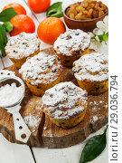 Купить «Mandarin muffins with raisin», фото № 29036794, снято 7 января 2018 г. (c) Надежда Мишкова / Фотобанк Лори