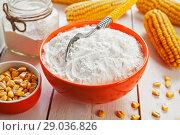 Купить «Starch and corn cob», фото № 29036826, снято 18 марта 2018 г. (c) Надежда Мишкова / Фотобанк Лори
