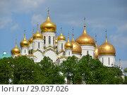 Купить «Золотые купола Благовещенского и Успенского соборов Московского Кремля», эксклюзивное фото № 29037026, снято 9 мая 2016 г. (c) lana1501 / Фотобанк Лори