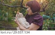 Купить «Woman Love Her Cat», видеоролик № 29037134, снято 26 августа 2018 г. (c) Илья Шаматура / Фотобанк Лори