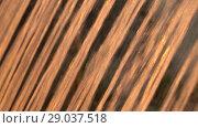 Купить «Jets water of fountain fly up in the rays of sunset, close-up. HD slowmotion x4», видеоролик № 29037518, снято 23 февраля 2019 г. (c) Dmitry Domashenko / Фотобанк Лори