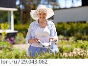 Купить «senior gardener with hedge trimmer at garden», фото № 29043062, снято 3 июня 2018 г. (c) Syda Productions / Фотобанк Лори