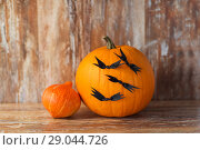 pumpkins with bats or halloween party decorations. Стоковое фото, фотограф Syda Productions / Фотобанк Лори