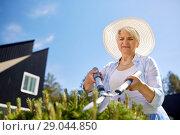 Купить «senior gardener with hedge trimmer at garden», фото № 29044850, снято 3 июня 2018 г. (c) Syda Productions / Фотобанк Лори