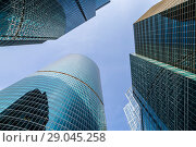 Купить «Towers of the Moscow International business center against the blue sky, Moscow, Russia», фото № 29045258, снято 1 сентября 2018 г. (c) Наталья Волкова / Фотобанк Лори