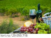 Купить «Red wine with basket», фото № 29050718, снято 25 мая 2019 г. (c) Яков Филимонов / Фотобанк Лори