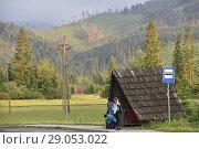 Купить «Bus shelter on the ligne Chocholow-Zakopane, near Witow, Podhale Region, Polish Tatra mountains, Malopolska Province (Lesser Poland), Poland, Central Europe.», фото № 29053022, снято 18 июня 2018 г. (c) age Fotostock / Фотобанк Лори
