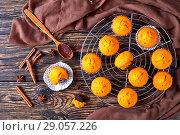 Купить «freshly baked sweet pumpkin muffins», фото № 29057226, снято 27 августа 2018 г. (c) Oksana Zh / Фотобанк Лори
