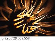 Купить «Retro style tungsten lamp glowing over dark», фото № 29059558, снято 14 июля 2018 г. (c) EugeneSergeev / Фотобанк Лори