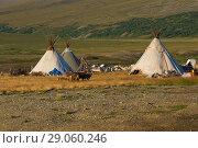 Купить «A modern camp of reindeer herders on the August day. Yamal, Russia», фото № 29060246, снято 22 августа 2018 г. (c) Виктор Карасев / Фотобанк Лори