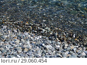 Купить «background of a pebbles on the beach», фото № 29060454, снято 5 июня 2018 г. (c) Володина Ольга / Фотобанк Лори