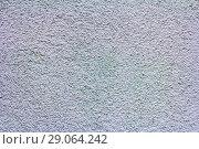 Купить «The texture of the plastered wall, gray.», фото № 29064242, снято 12 мая 2018 г. (c) Акиньшин Владимир / Фотобанк Лори