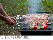 Купить «Мужчина готовит шашлык на мангале», фото № 29064382, снято 31 августа 2018 г. (c) Татьяна Белова / Фотобанк Лори