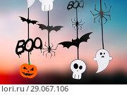 Купить «halloween party garlands or decorations», фото № 29067106, снято 6 июля 2017 г. (c) Syda Productions / Фотобанк Лори