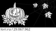 Купить «Halloween. 31 October. A pumpkin with a carved terrible face, autumn leaves with holes, spiderweb. Horizontal location. Drawing style engraving», иллюстрация № 29067962 (c) Юлия Фаранчук / Фотобанк Лори