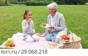 Купить «grandmother and granddaughter at picnic in park», видеоролик № 29068218, снято 24 августа 2018 г. (c) Syda Productions / Фотобанк Лори
