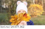 Купить «Веселая девочка в теплой вязаной шапке собирает букет из желтых листьев. Осень, прогулка в парке.», фото № 29077362, снято 6 ноября 2017 г. (c) Милана Харитонова / Фотобанк Лори