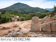 Купить «Back of Menhir statues in Filitosa, Corsica», фото № 29082546, снято 20 августа 2018 г. (c) EugeneSergeev / Фотобанк Лори