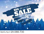 Купить «Winter Sale illustrated with firs and snowflakes in blue and white», фото № 29088730, снято 26 сентября 2018 г. (c) Wavebreak Media / Фотобанк Лори