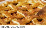 Купить «close up of apple pie slicing by knife», видеоролик № 29092850, снято 7 сентября 2018 г. (c) Syda Productions / Фотобанк Лори