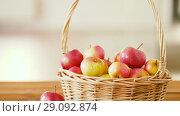 Купить «ripe apples in wicker basket on wooden table», видеоролик № 29092874, снято 7 сентября 2018 г. (c) Syda Productions / Фотобанк Лори
