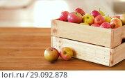 Купить «ripe apples in wooden box on table», видеоролик № 29092878, снято 7 сентября 2018 г. (c) Syda Productions / Фотобанк Лори