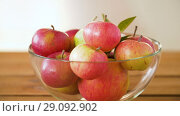 Купить «ripe apples in glass bowl on wooden table», видеоролик № 29092902, снято 7 сентября 2018 г. (c) Syda Productions / Фотобанк Лори
