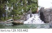 Купить «Imatra, Suomi or Finland», видеоролик № 29103442, снято 23 мая 2017 г. (c) Сергей Петерман / Фотобанк Лори