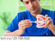 Купить «Man dentist working on new teeth implant», фото № 29106026, снято 28 мая 2018 г. (c) Elnur / Фотобанк Лори