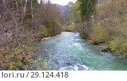 Купить «Autumn view of mountain river», видеоролик № 29124418, снято 19 сентября 2018 г. (c) Сергей Петерман / Фотобанк Лори