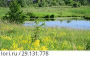 Купить «small plain lake In central part of Russia», видеоролик № 29131778, снято 22 июня 2018 г. (c) Володина Ольга / Фотобанк Лори