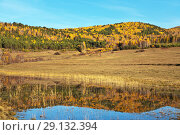 Купить «A beautiful autumn landscape with yellowed trees on a hills and a mirror image in a pond», фото № 29132394, снято 27 сентября 2009 г. (c) Виктория Катьянова / Фотобанк Лори