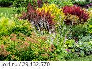 Купить «Ландшафтный дизайн в оформлении сада», фото № 29132570, снято 7 июля 2018 г. (c) Ольга Сейфутдинова / Фотобанк Лори