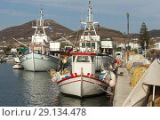 Купить «Traditional fishing boats at the harbour of Parikia village, Paros Island, Cyclades Islands, Greek Islands, Greece, Europe», фото № 29134478, снято 8 сентября 2018 г. (c) age Fotostock / Фотобанк Лори